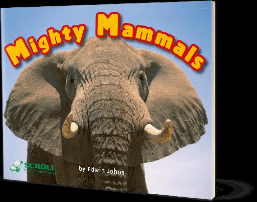 Mighty Mammals
