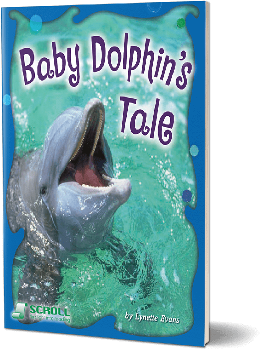 Baby Dolphin's Tale