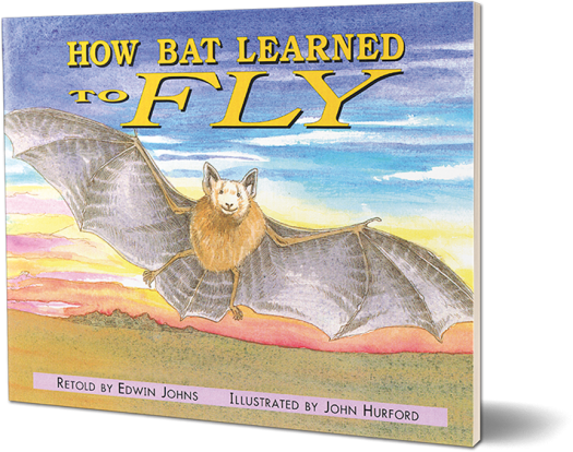 How Bat Learned To Fly